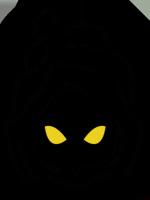 Avatar du membre